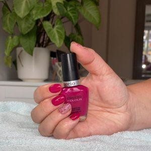 Manicures Beauty Treatment